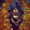 शक्ति की भक्ति के प्रतीक नवरात्रा आरंभ