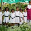 नन्हें-मुन्ने बच्चों ने जाना पौधों के बारे में