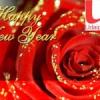 अलविदा 2013, स्वागतम आजादी सा साल