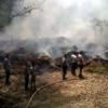 गुलाबबाग में कचरे में लगी आग