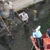 झीलों की सफाई के लिए जनता के धन का दुरुपयोग