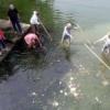 'झील संरक्षण योजना से आम जनता दूर क्यों'