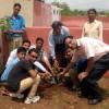 अणुव्रत समिति ने किया पौधरोपण