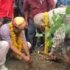 विद्या भवन पॉलिटेक्निक में हरित राजस्थान का आगाज