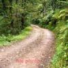 पीडब्ल्यूडी : कहीं की सड़क, कहीं बना दी
