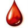 सुविवि में 25 को रक्तदान करेंगे 400 विद्यार्थी