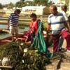 श्रमदान कर झील से निकाला कचरा