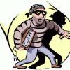 दंपती के खिलाफ चोरी का मामला दर्ज