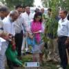 एमईए ने की देशभर में पौधरोपण के अभियान की शुरूआत