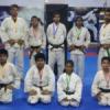 ताइक्वाण्डो प्रतियोगिता में उदयपुर ने जीते 4 स्वर्णपदक