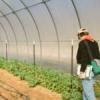 किसान वैज्ञानिकों का राष्ट्रीय मंथन 18 से पेसिफिक में