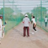 पेसिफिक प्रीमियर लीग क्रिकेट में टीमों का ट्रायल 14 तक