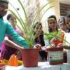 छात्राओं ने लिया जन्मदिन पर पौधरोपण का संकल्प